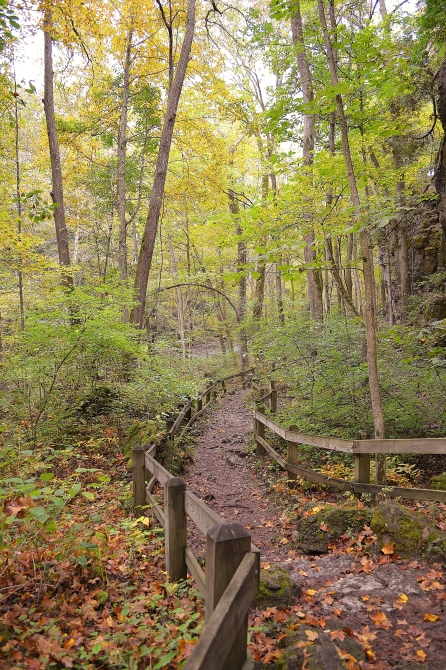 Yellow Springs Trail Down