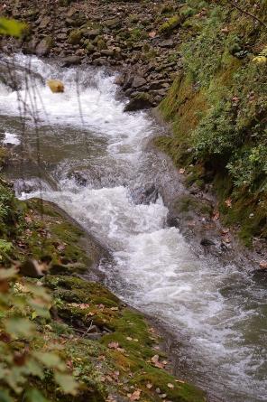 Yellow Springs Water Gushing